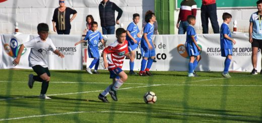 Copa futbol base Ciudad de Pozoblanco