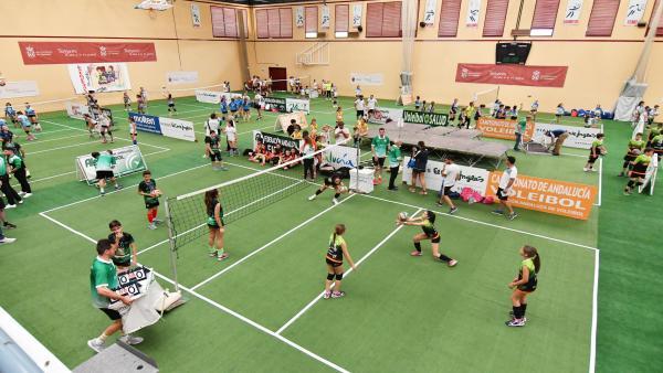 Torneos de voleibol CADEBA y OPEN Promesas