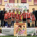 Torneo promesas voleibol Andalucía