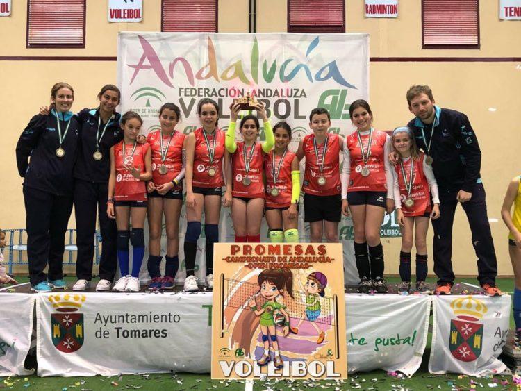 Torneos CADEBA y OPEN Promesas voleibol Andalucía