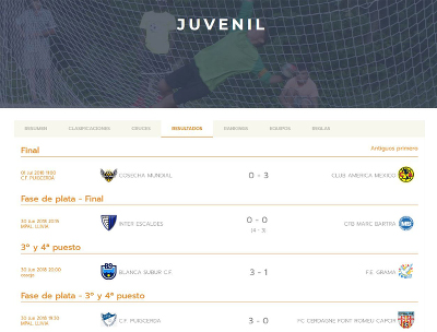 Integration of Competize in the website of Pyrenees Cup