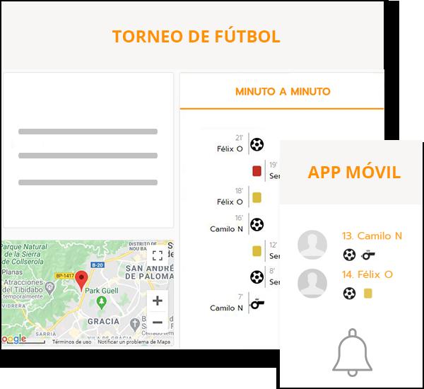 Soccer & football league management software
